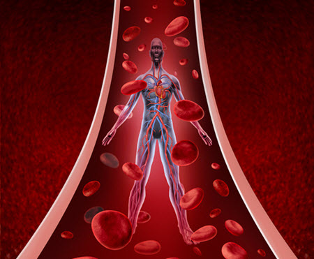how to improve blood flow for longer lasting erections