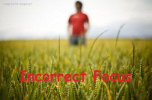 premature ejaculation focus