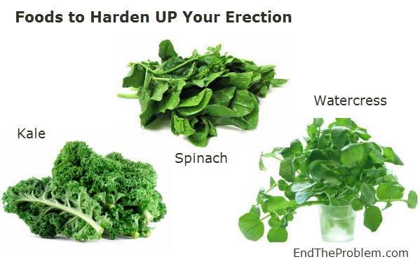 foods to harden up your erection
