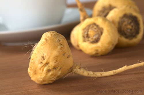 maca helps to overcome male infertility